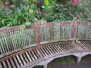 botanic garden 1