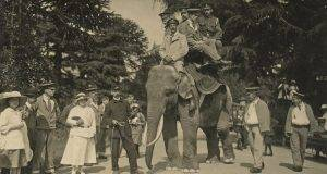 bristol zoo in 19th c