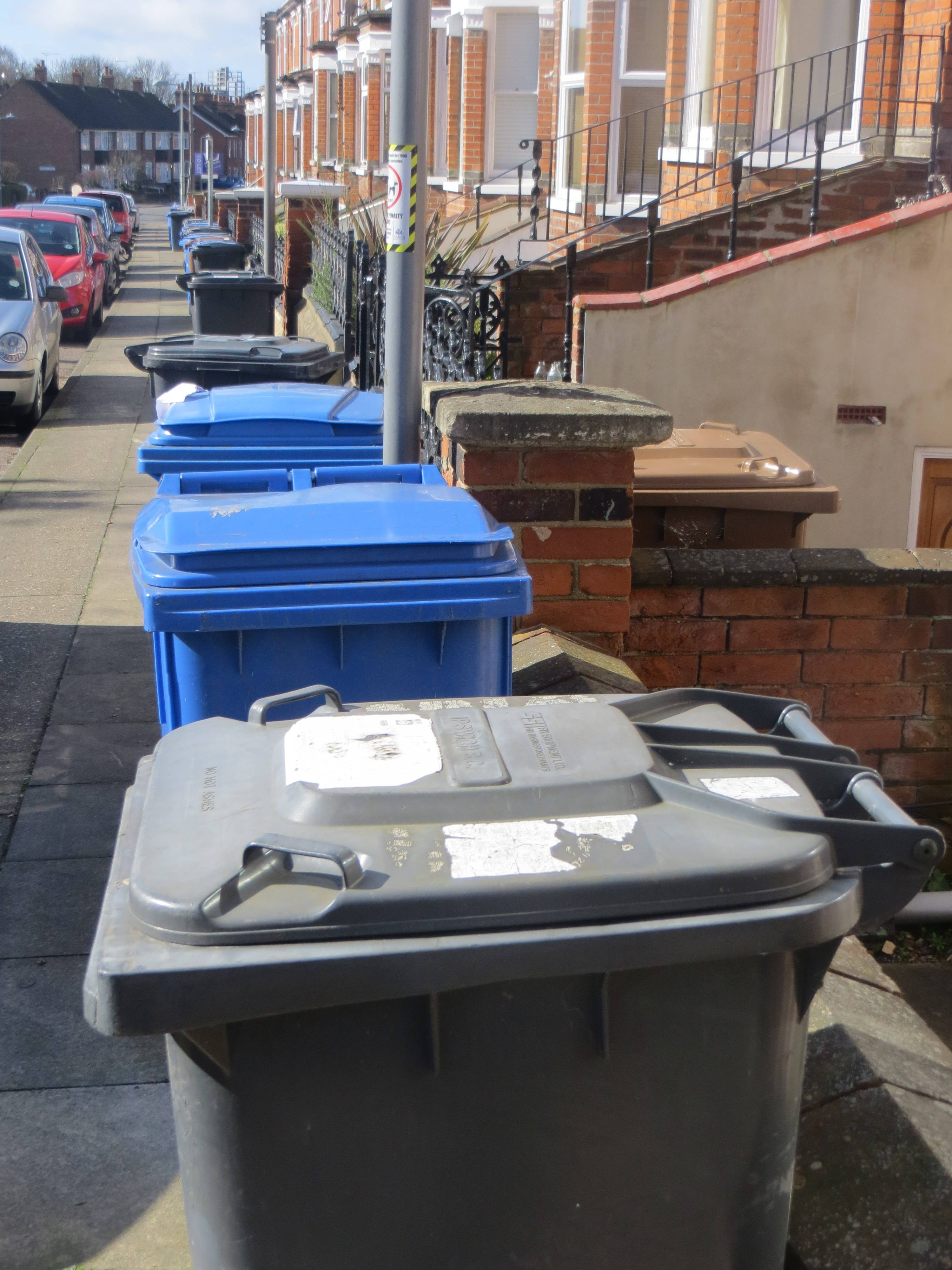 ipswich the bins
