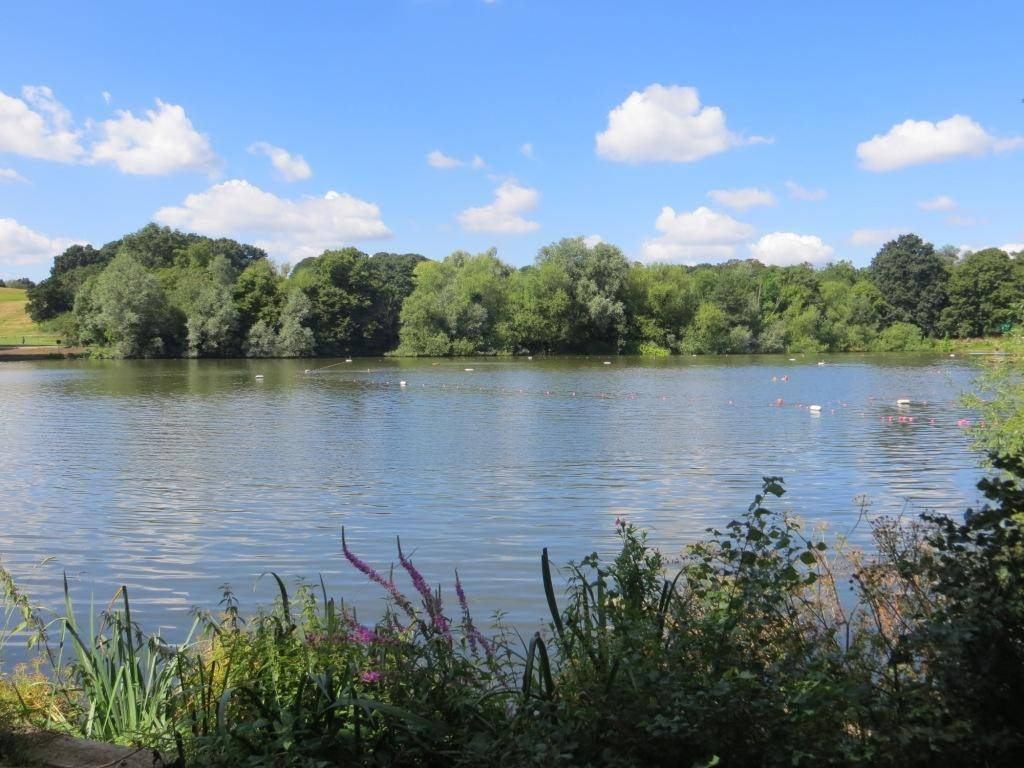 10. highgate ponds